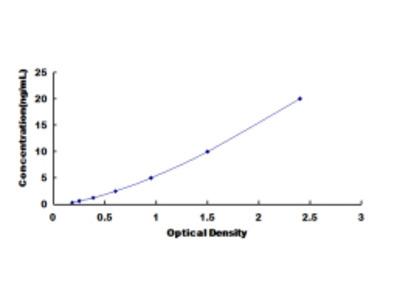 Dopamine Receptor D1 (DRD1) ELISA Kit
