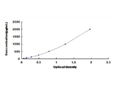 C-Type Natriuretic Peptide (CNP) ELISA Kit