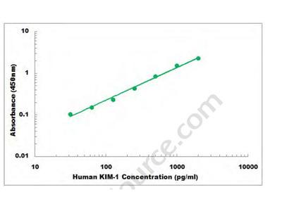 Human KIM-1 ELISA Kit