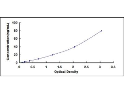 Alkaline Phosphatase (ALP) ELISA Kit