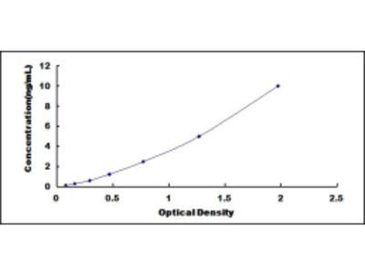 Platelet Derived Growth Factor Receptor Alpha (PDGFRa) ELISA Kit