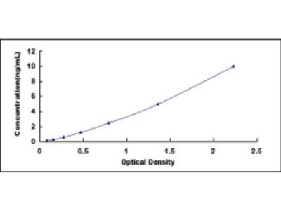 Dual Oxidase 2 (DUOX2) ELISA Kit