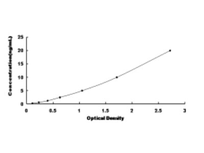 Cysteinyl Leukotriene Receptor 1 (CYSLTR1) ELISA Kit
