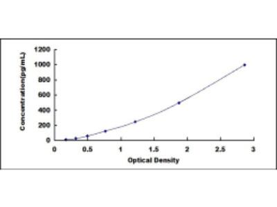 Tumor Necrosis Factor Beta (TNFb) ELISA Kit