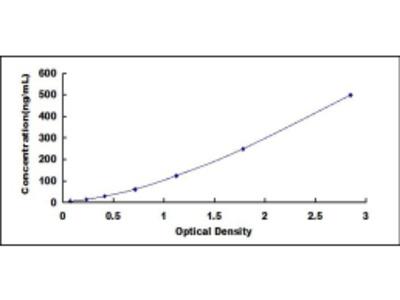 Lactate Dehydrogenase (LDH) ELISA Kit
