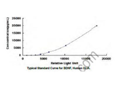 Brain Derived Neurotrophic Factor (BDNF) CLIA Kit