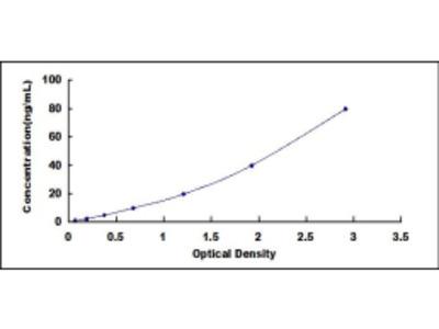 Hepatocyte Growth Factor Receptor (HGFR) ELISA Kit