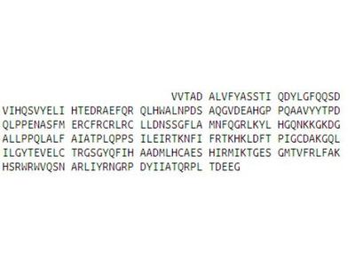 Recombinant Aryl Hydrocarbon Receptor (AhR)