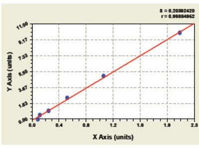 Canine Heat Shock Transcription Factor 2 ELISA Kit