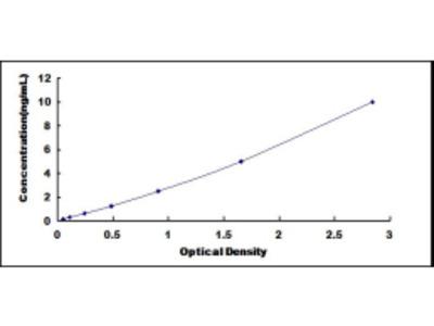 Cysteine And Glycine Rich Protein 1 (CSRP1) ELISA Kit
