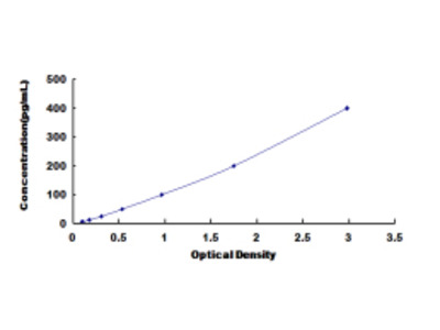 A Disintegrin And Metalloprotease 8 (ADAM8) ELISA Kit