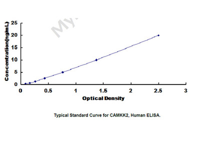 Calcium/Calmodulin Dependent Protein Kinase Kinase 2 (CAMKK2) ELISA Kit