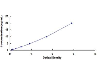Diazepam Binding Inhibitor (DBI) ELISA Kit