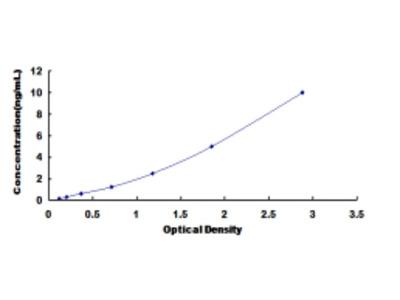 Latent Transforming Growth Factor Beta Binding Protein 2 (LTBP2) ELISA Kit