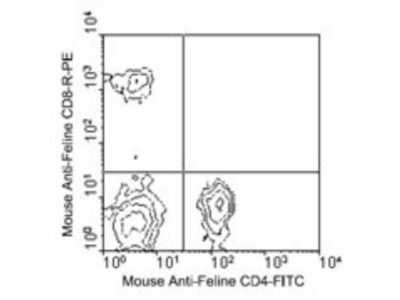 Feline CD4 Immunophenotyping