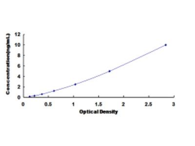 Cytochrome P450 1A2 (CYP1A2) ELISA Kit