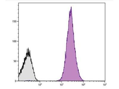 Mouse Monoclonal Integrin beta 3 / CD61 Antibody