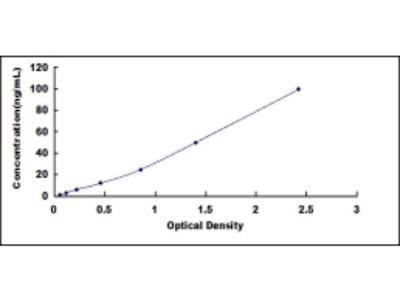 Drebrin Like Protein (DBNL) ELISA Kit