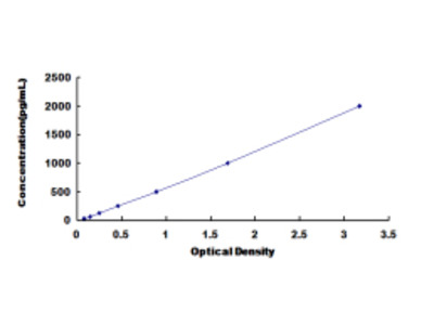 Leptin Receptor (LEPR) ELISA Kit
