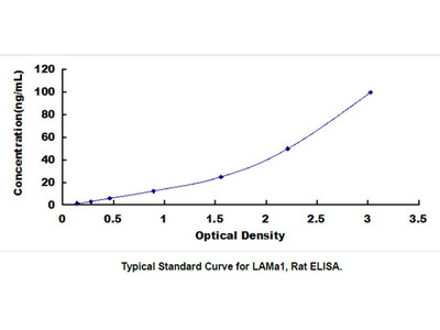 Laminin Alpha 1 (LAMa1) ELISA Kit