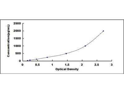 Fc Fragment Of IgG Low Affinity IIIa Receptor (FcgR3A) ELISA Kit