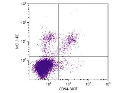 CD94 Antibody (18D3)