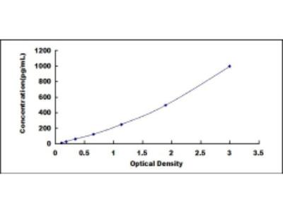 Tumor Necrosis Factor Alpha (TNFa) ELISA Kit