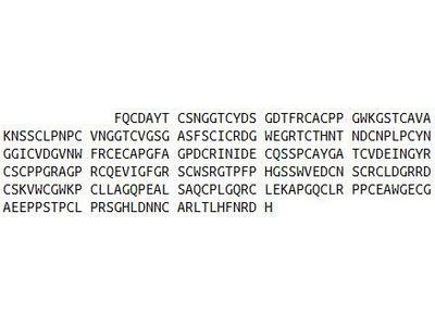 Recombinant Jagged 2 Protein (JAG2)