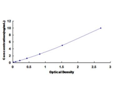 Histone Deacetylase 1 (HDAC1) ELISA Kit