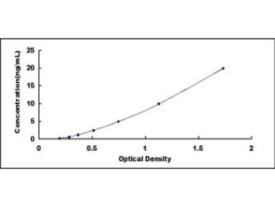 Cellular Retinoic Acid Binding Protein 2 (CRABP2) ELISA Kit