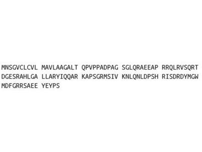 Recombinant Cholecystokinin (CCK)