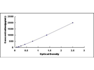 Angiotensin I Converting Enzyme (ACE) ELISA Kit