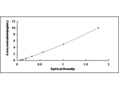Octamer Binding Transcription Factor 4 (OCT4) ELISA Kit
