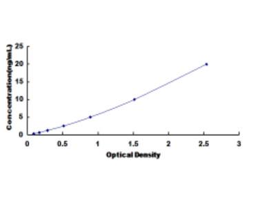 Dipeptidyl Peptidase 8 (DPP8) ELISA Kit