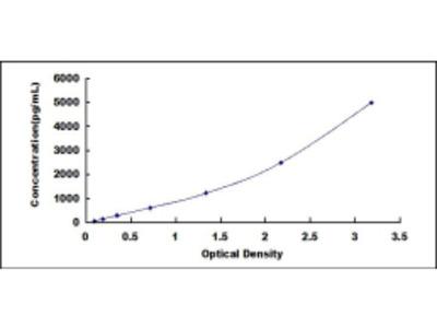 Natriuretic Peptide Receptor 2 (NPR2) ELISA Kit