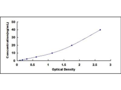 Dipeptidyl Peptidase IV (DPP4) ELISA Kit