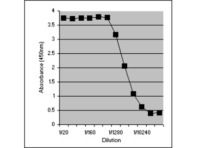 RAT ANTI MOUSE INTERFERON GAMMA:Biotin