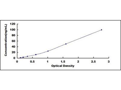 Sorbitol Dehydrogenase (SDH) ELISA Kit