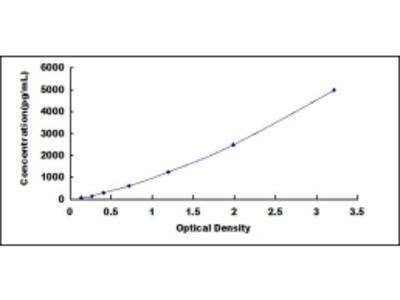 Growth Hormone Receptor (GHR) ELISA Kit