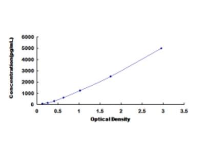 Pulmonary Activation Regulated Chemokine (PARC) ELISA Kit