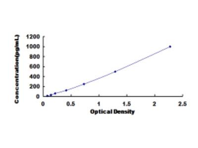 Atrial Natriuretic Peptide (ANP) ELISA Kit