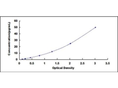 FMS Like Tyrosine Kinase 3 Ligand (Flt3L) ELISA Kit