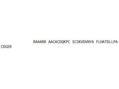 Recombinant Glutamate Decarboxylase 2, Acid (GAD2)