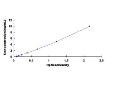 Cholinergic Receptor, Nicotinic, Beta 2 (CHRNb2) ELISA Kit