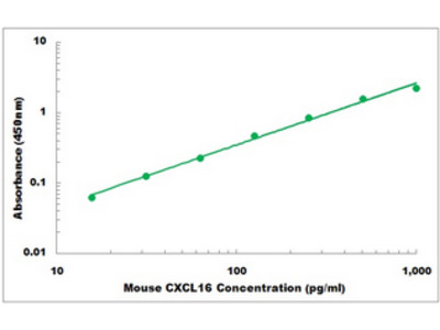 Mouse CXCL16 ELISA Kit