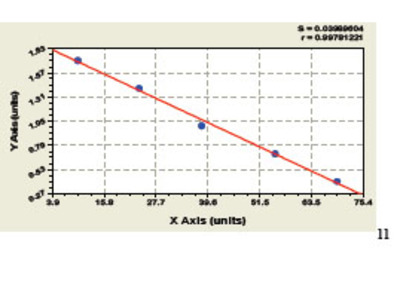 Human P27 Protein ELISA Kit