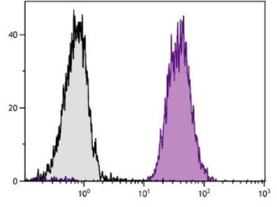 H-2Dd Antibody (34-5-8S) [FITC]