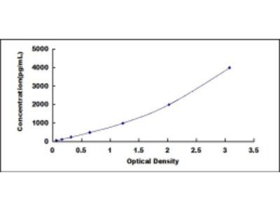 Methylenetetrahydrofolate Reductase (MTHFR) ELISA Kit