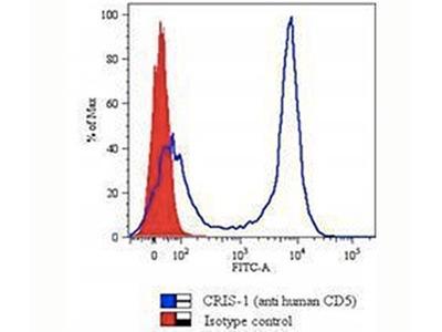 CD5 Antibody (Mouse Monoclonal)