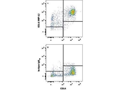 CCL4 /MIP-1 beta APC-conjugated Antibody